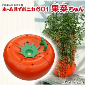 ホームハイポニカ601 果菜ちゃん 水耕栽培キット 家庭菜園 ベランダ菜園 関東当日便