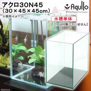 オールガラス水槽 アクロ30N45(30×45×45cm) フタ無し お一人様1点限り アクアリウム用品 沖縄別途送料 関東当日便|chanet
