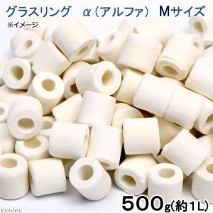 高品質ろ過材 グラスリング α(アルファ) Mサイズ 500g(約1L) リング状ろ材 バクテリア 関東当日便|chanet