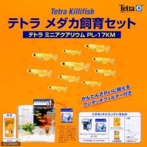 テトラ メダカ飼育セット PL−17KM 関東当日便