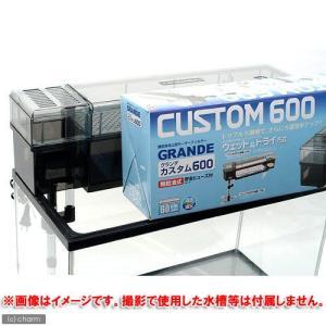 GEX グランデカスタム600 60cm水槽用上部フィルター ジェックス お一人様2点限り