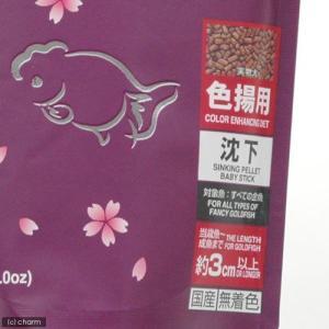 紫 キョーリン 咲ひかり 金魚 色揚げ用 沈下...の詳細画像1