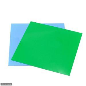 30cmキューブ水槽用 丈夫な塩ビ製バックスクリーン 30×30cm 若草 ライトグリーン 関東当日便|chanet