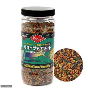 消費期限 2020/07/14 メーカー:ビバリア 品番:498027 毎日の給餌に最適、完全栄養食...