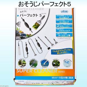 スーパークリーナー おそうじパーフェクト5 関東当日便