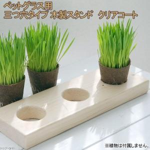 ペットグラス用 木製スタンド クリアコート 三連 関東当日便|chanet