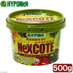 ハイポネックス ネクスコート 観葉植物用 500g 肥料 関東当日便|chanet