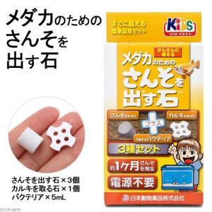 日本動物薬品 ニチドウ メダカのためのさんそを出す石 小3個入り 1ヶ月タイプ カルキを取る石 バクテリア付き 関東当日便|chanet