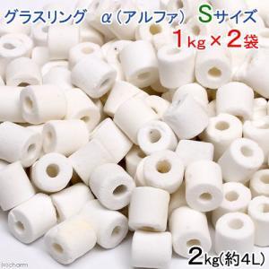 高品質ろ過材 グラスリング α(アルファ) Sサイズ 2Kg(1Kg×2袋)約4L リング状ろ材 バクテリア 関東当日便|chanet