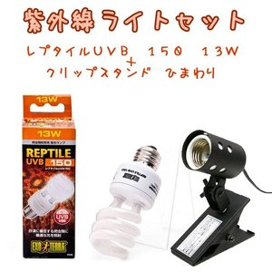 紫外線ライトセット レプタイルUVB 150 13W + クリップスタンド ひまわり