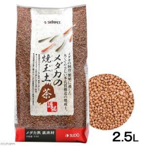 メーカー:スドー メーカー品番:S-5946 アクアリウム用品 kjKPkin アクア用品 熱帯魚 ...