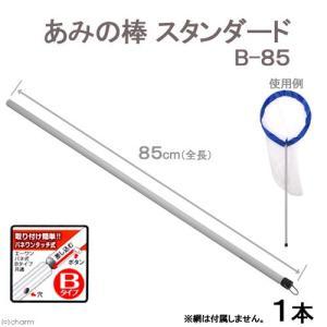 あみの棒 スタンダード B−85 昆虫採集 虫捕り網 関東当日便|chanet