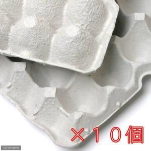 紙製卵トレー 45×29cm 10個セット 昆虫...の商品画像