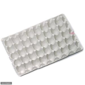 紙製卵トレー 45×29cm 10個セット 昆...の詳細画像1