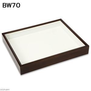 バードウィング製 ドイツ型標本箱 BW70 (幅50.7×奥行き41.8×高さ7cm) 昆虫 標本用品 沖縄別途送料 関東当日便|chanet