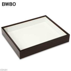 バードウィング製 ドイツ型標本箱 BW80 (幅50.7×奥行き41.8×高さ8cm) 昆虫 標本用品 沖縄別途送料 関東当日便|chanet