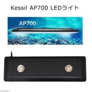 □Kessil AP700 水槽用照明 LEDライト 海水魚 サンゴ 沖縄別途送料