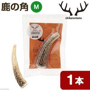 鹿の角 Mサイズ 長さ10〜14cm以下 1本 小型犬 中型犬 おもちゃ デンタルケア 関東当日便|chanet