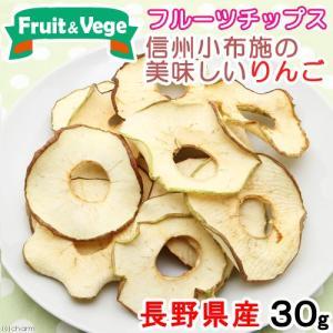 信州産 小布施の美味しいりんご 30g 国産 PackunxCOCOA 犬用おやつ お1人様4点限り 関東当日便|chanet