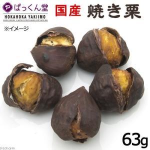 国産 焼き栗 63g 無添加 無着色 犬用おやつ ぱっくん堂 関東当日便|chanet