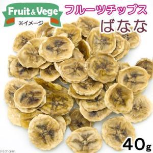 平成29年産 フルーツチップス バナナ 40g 国産 犬用おやつ PackunxCOCOA フルーツ&ベジ 関東当日便|chanet