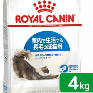 ロイヤルカナン 猫 インドア ロングヘアー 成猫用 4kg 3182550739405 お一人様5点限り ジップ付 関東当日便|chanet