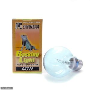 ポゴナ・クラブ ビバリウム バスキングライト 40W 爬虫類 保温球