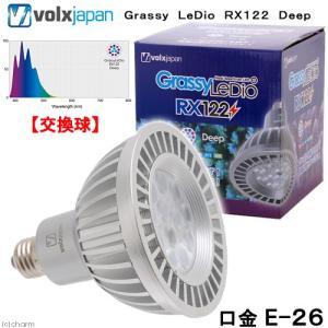 メーカー:ボルクスジャパン 品番:GLRX122/DP ▼▲ サンゴの色揚げを促す!深場の蛍光タンパ...