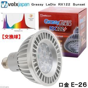 メーカー:ボルクスジャパン 品番:GLRX122/SS ▼▲ 光合成を促進する!葉緑素の吸収波長を補...
