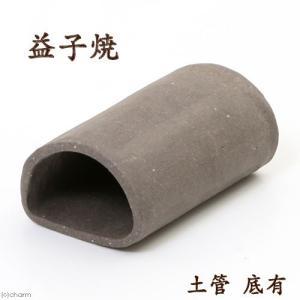 益子焼 土管 大 焼締 底有 シェルター シュリンプ プレコ