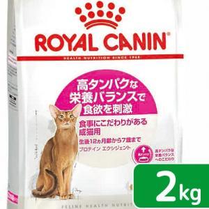 ロイヤルカナン FHN エクシジェント42 成猫用 2kg 正規品 3182550767194 お一人様5点限り 関東当日便