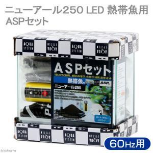 アウトレット品 ASPセット 熱帯魚用 NR250 LED 60Hz 25cm水槽セット 訳あり 沖縄別途送料 関東当日便|chanet