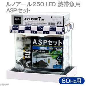 アウトレット品 ASPセット 熱帯魚用 ルノアール250 LED 60Hz 28cm水槽セット 沖縄別途送料 訳あり 関東当日便|chanet
