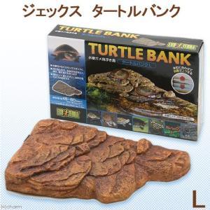GEX エキゾテラ タートルバンク L 亀 浮島 関東当日便