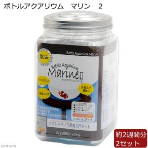 ウォーターエンジニアリング ボトルアクアリウム マリン 2 関東当日便