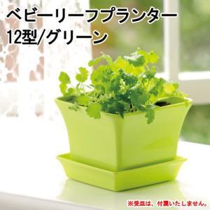 リッチェル ベビーリーフプランター 12型 グリーン キッチン菜園 ベビーリーフ 室内ガーデニング プランター 関東当日便 chanet