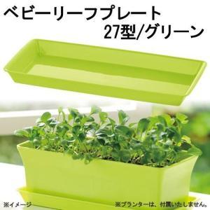 リッチェル ベビーリーフプレート 27型 グリーン キッチン菜園 ベビーリーフ 室内ガーデニング 関東当日便 chanet