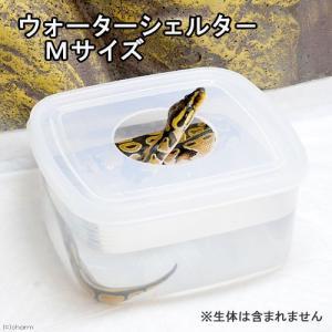 水漏れ防止の便利なシェルター兼水入れ!地面を張っているイメージの強いヘビの仲間ですが、意外なほど水の...
