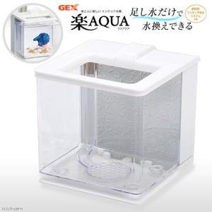 GEX 楽アクア ホワイト 小型水槽 おしゃれ水槽 関東当日便|chanet