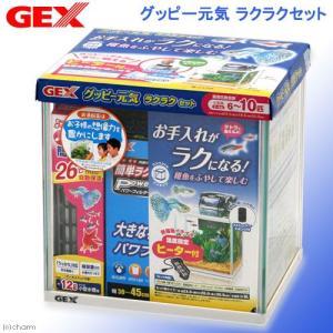 GEX お一人様5点限り グッピー元気 ラクラクセット グッピー 熱帯魚 水槽セット ジェックス 関東当日便