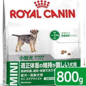 ロイヤルカナン SHN ミニ ステアライズド 成犬・高齢犬用 800g 正規品 3182550833189 お一人様5点限り 関東当日便
