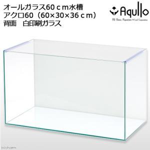 バックプリント WHITE アクロ60N(60×30×36cm) 60cm水槽(単体) Aqullo お一人様2点限り アクアリウム用品 関東当日便|chanet