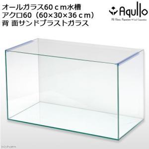 バックプリント SANDBLAST アクロ60N(60×30×36cm) 60cm水槽(単体) Aqullo お一人様1点限り 関東当日便|chanet