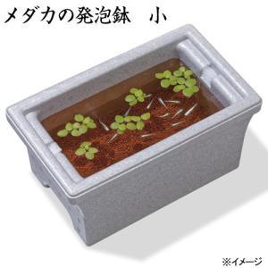 スドー メダカの発泡鉢 小 3.2L 発砲スチロール箱 関東当日便