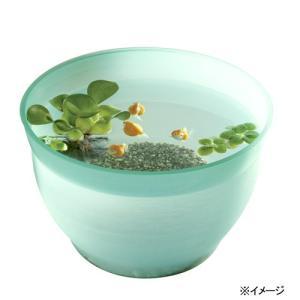 スドー 金魚の小鉢 そーだ(曹達) 金魚鉢 関東当日便