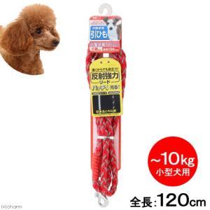 ターキー ダイスキシリーズ 反射強力リード 赤 小型犬用 直径0.8×120cm お散歩用 引ひも 関東当日便|chanet