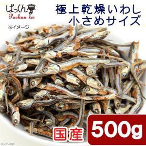 消費期限 2020/01 … _dog _hachu _kame muryotassei_900_9...
