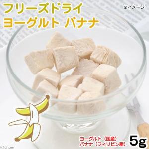 フリーズドライ ヨーグルト バナナ味 5g タンパク質が必要な小動物用 無着色