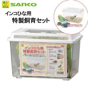 三晃商会 SANKO インコひな用 特製飼育セット 小鳥 雛 飼育ケース