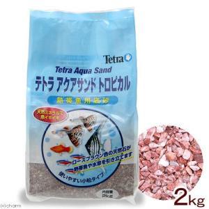 アウトレット品 テトラ ミニアクアサンド トロピカル 熱帯魚用底砂 2kg(白パケ) 訳あり 関東当日便